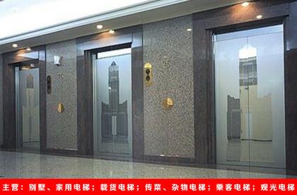 河南乘客电梯生产厂家,乘客电梯价格 专业定制 厂家直销