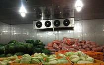 蔬菜保鲜库 食品冷库建设专家
