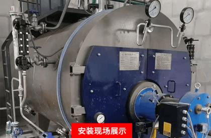 WNS15-1.6-(Q)燃氣蒸汽鍋爐多少錢 廠家直銷