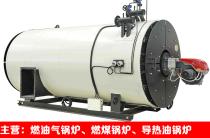 导热油炉多少钱 导热油锅炉 订制燃气导热油炉 燃气导热油锅炉厂家